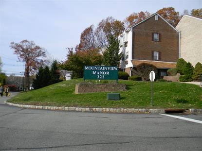 322 C3 RICHARD MINE RD  Rockaway Twp., NJ MLS# 3161261