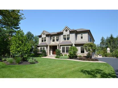 25 CLIVE HILLS ROAD  Short Hills, NJ MLS# 3165781
