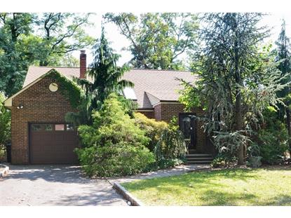 62 WILDER STREET  Hillside, NJ MLS# 3166625
