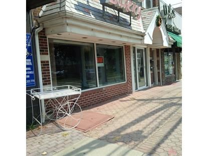 387 PARK AVE  Scotch Plains, NJ 07076 MLS# 3168546