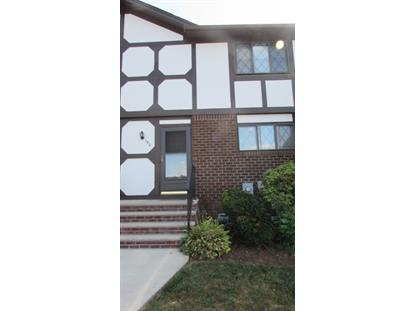 196 Wildflower Ln  Hillsborough, NJ MLS# 3171102