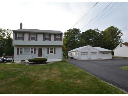 509 Green Pond Rd  Rockaway Twp., NJ MLS# 3171663
