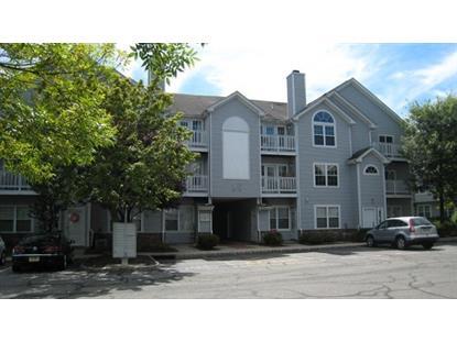 29 Springbrook Rd E  Montville Township, NJ 07045 MLS# 3172480