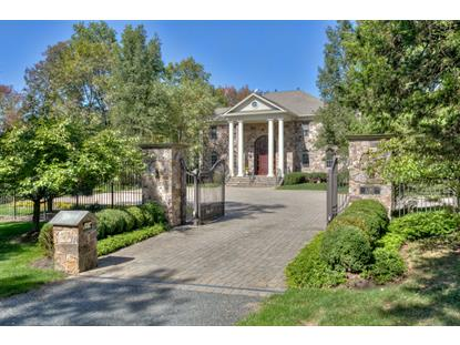 1280 Rattlesnake Bridge Rd  Bedminster, NJ MLS# 3174213
