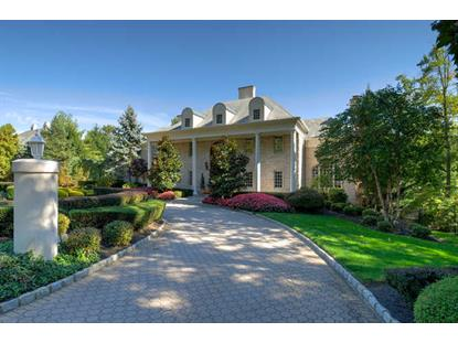 260 Old Somerset Rd  Watchung, NJ MLS# 3174521