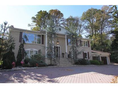 790 Mountain Ave  Berkeley Heights, NJ MLS# 3175236