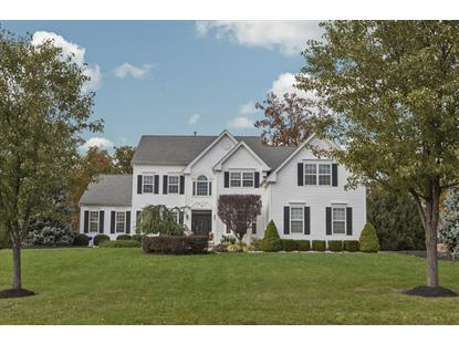33 Terrell Rd  West Amwell, NJ MLS# 3177871