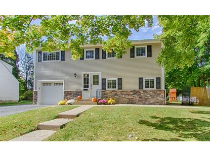 23 Laurie Ter  Hackettstown, NJ MLS# 3179203