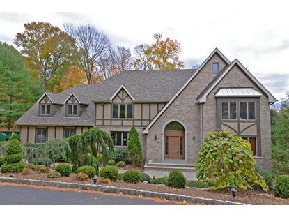 15 Horizon Dr  Wayne, NJ MLS# 3179496