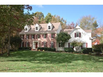 18 Aspen Ct  Montgomery, NJ MLS# 3179858