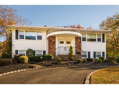 2 Willow Ct  Springfield, NJ MLS# 3180484