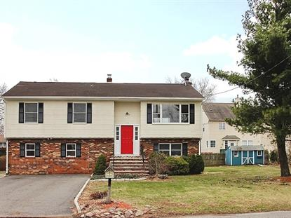 110 Hopkinson St  South Plainfield, NJ MLS# 3180943