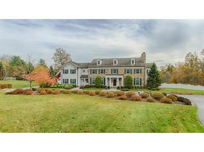 148 PLEASANTVILLE RD  Harding Twp., NJ MLS# 3181041