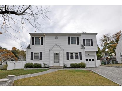 62 Cottage Ln  Clifton, NJ MLS# 3182672