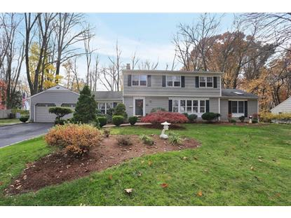 12 Murphy Cir  Florham Park, NJ MLS# 3182775