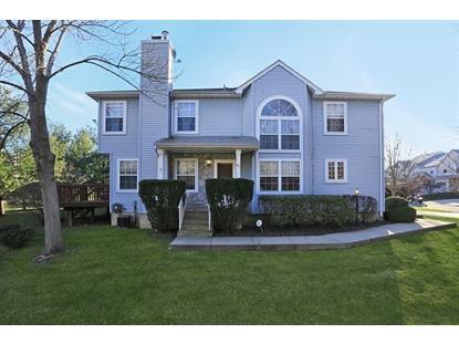 41 Castleton Rd  Montgomery, NJ MLS# 3185092