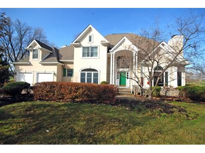 5 Cypress Point Ct  Montgomery, NJ MLS# 3186960