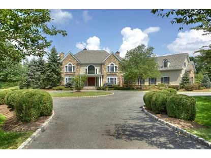 11 Spring Hollow Ln  Harding Twp., NJ MLS# 3187429