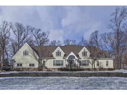 68 SOUTHERN HILLS DR  Montgomery, NJ MLS# 3195661