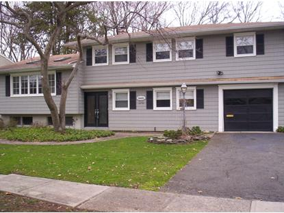 24 Cottage Ln  Springfield, NJ MLS# 3199913