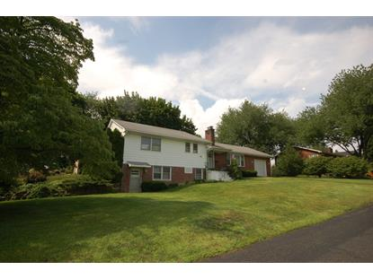 409 Ohio Ave  Pohatcong Township, NJ MLS# 3201420