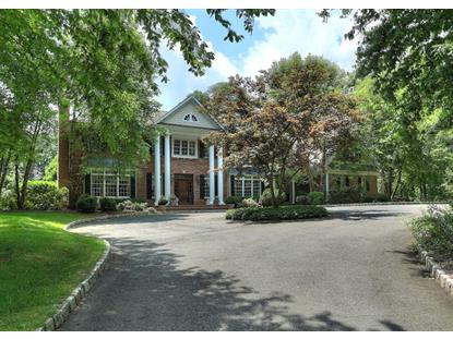 9 Timber Ridge Rd  Mendham Twp, NJ MLS# 3202581