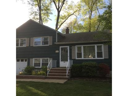 603 Hayward St  Bound Brook, NJ MLS# 3203932