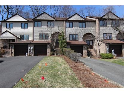 20 VALLEY FORGE LANE  Parsippany-Troy Hills Twp., NJ MLS# 3205298
