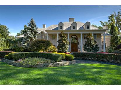 260 Old Somerset Rd  Watchung, NJ MLS# 3205494