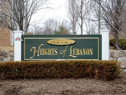 161 Conover Terrace  Lebanon, NJ MLS# 3206940