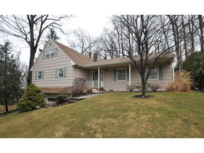 64 Cedar Green Ln  Berkeley Heights, NJ MLS# 3210854
