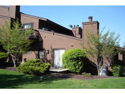 15 Summit Ct  Clinton Twp, NJ MLS# 3211211