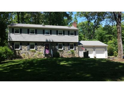 105 Mountain Rd  Bernards Township, NJ MLS# 3211292