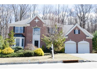 10 Red Maple Ln  Mount Olive, NJ MLS# 3212746