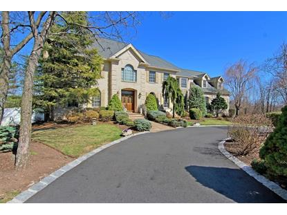 12 Windsor Dr  Montville Township, NJ MLS# 3212821
