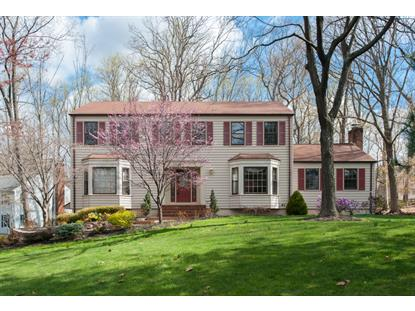 9 Spice Hill Rd  Berkeley Heights, NJ MLS# 3213316