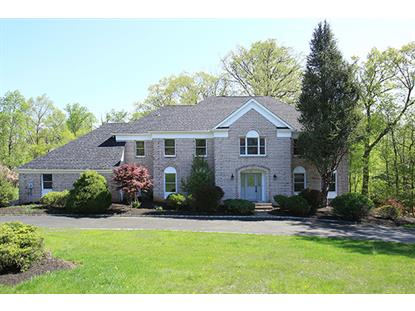 43 Christy Dr  Warren, NJ MLS# 3214141