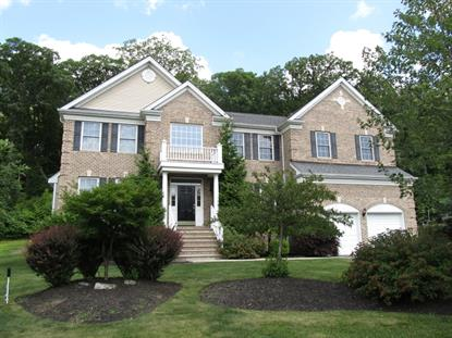 13 Chestnut Way  Mount Olive, NJ MLS# 3214183