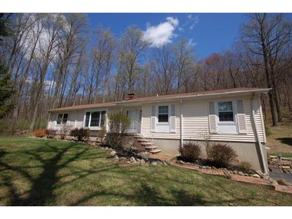11 Woodbrook Rd  Bethlehem Twp, NJ MLS# 3216395