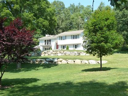 Real Estate for Sale, ListingId: 33132337, Byram Twp,NJ07821