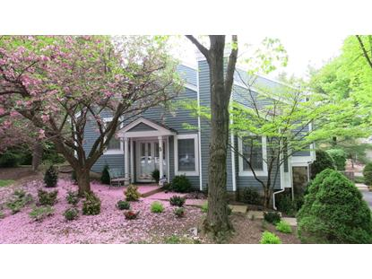 5 Berkley Ln  Bedminster, NJ MLS# 3219373