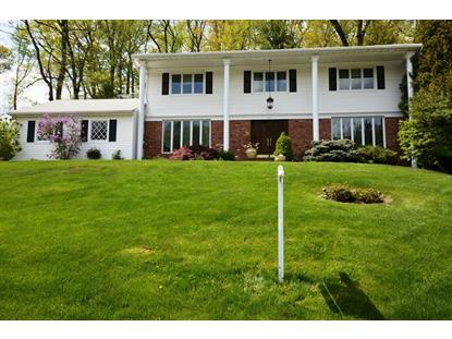 397 Rolling Rock Rd  Springfield, NJ MLS# 3219514