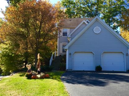 131 Crestview Lane  Mount Arlington, NJ MLS# 3221512