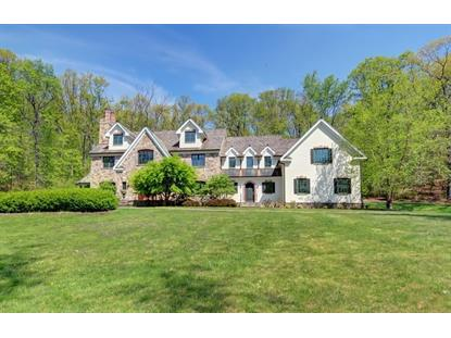 3 Laurelwood Dr  Chester, NJ MLS# 3222397