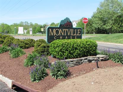 12 Davenport Rd  Montville Township, NJ MLS# 3222542