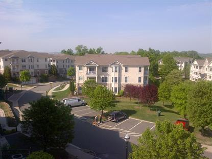 311 HOLLY LN  Cedar Grove, NJ MLS# 3223028