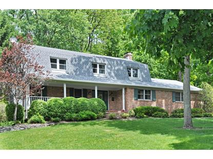 45 Old Cannon Rd  Berkeley Heights, NJ MLS# 3224255
