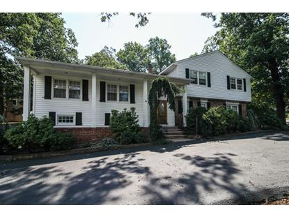 18 Green Hill Rd  Springfield, NJ MLS# 3225432