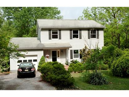 3 Musconetcong River Rd  Lebanon, NJ MLS# 3225942