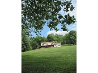 252 MUSCONETCONG RIVER RD  Lebanon, NJ MLS# 3226316